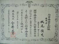 hpsozai 207hp.jpg